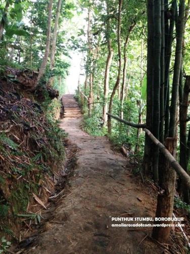 Jalan setapak menuju puncak bukit Punthuk Stumbu