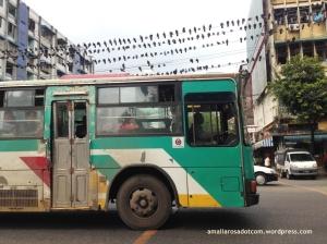 Bus dalam kota Yangon